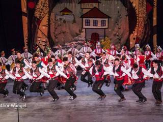"""Фолклорен танцов ансамбъл """"Иглика"""""""